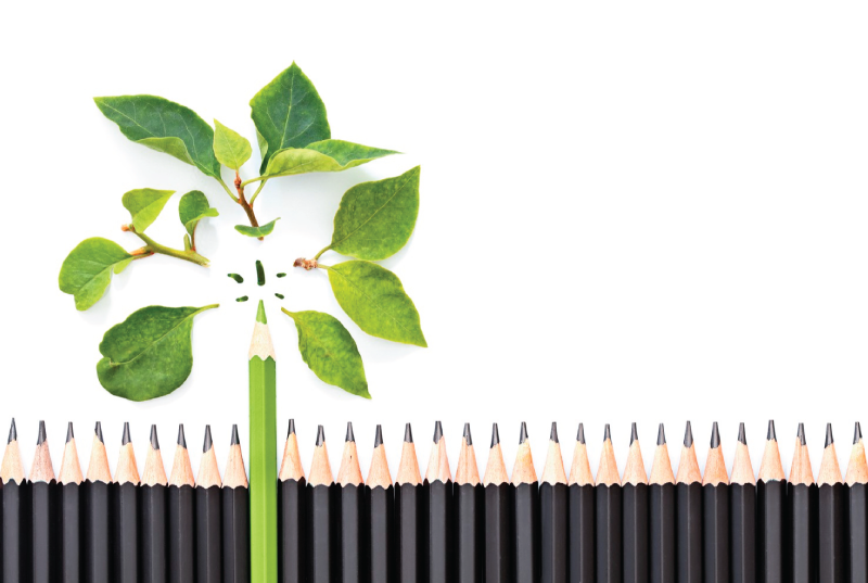 Ekološke olovke proizvedene u Srbiji
